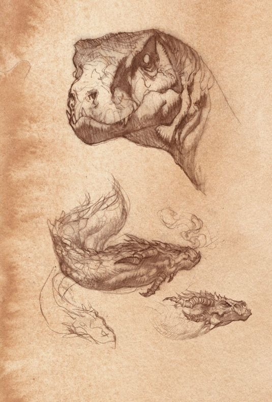 How to draw a dragon - crocodile and other studies