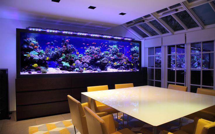We offer commercial aquarium rentals as well! check out our range today -