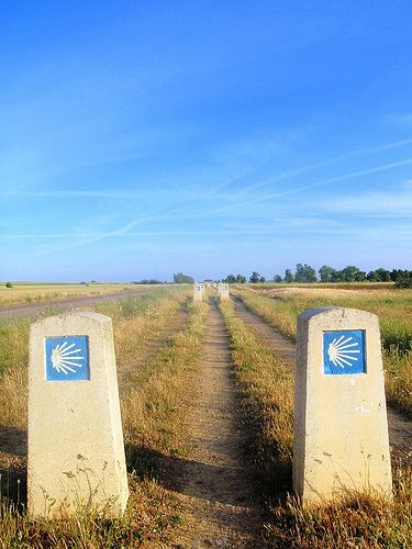 Walk the Camino de Santiago. I know I'll most likely never do it, but it's nice to dream....