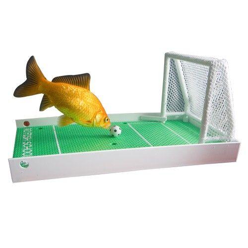 Aktivointia akvaariokaloille R2 Fish School -paketti - MFKA Verkkokauppa