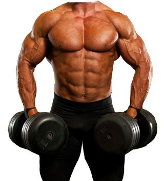 Body Building Photo MakingEasy to use , fast , have more 50+ photo Men's Body Builder PhotoTAG : Man Body Builder Photo Montage , Body Building Men Fashion , Men's Bodybuilding Photoshoot  http://Mobogenie.com