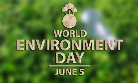 15 best special events images on pinterest special events show your love for nature this world environment day let us pledge to protect our fandeluxe Images