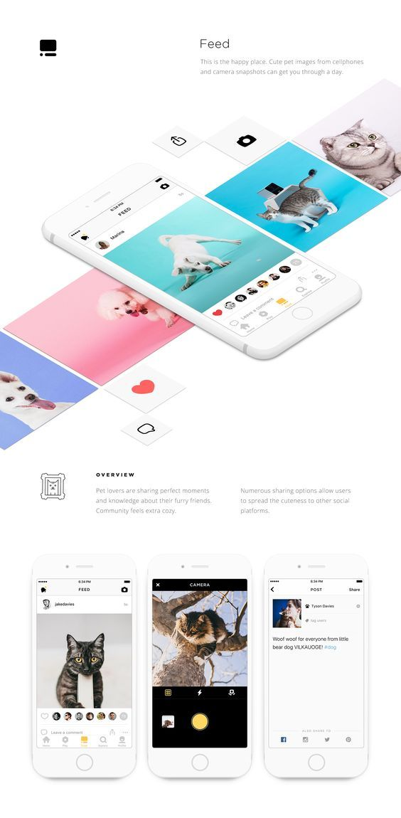 Petcube for iOS on Behance: