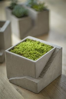Cement Architectural Pot with One Planter
