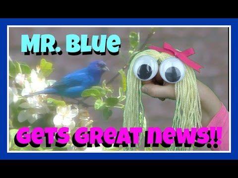 HAND PUPPET SHOW FOR CHILDREN - MR. BLUE BIRD GETS GREAT NEWS! - Blue Bi...