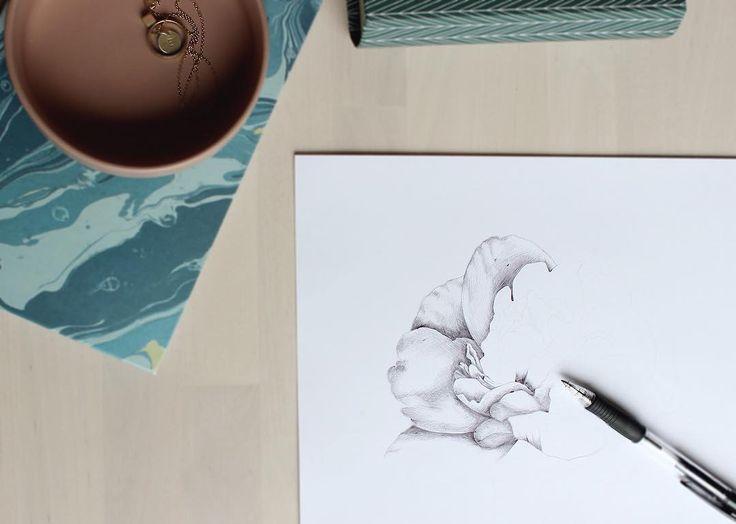 Peony in progress #illustration #ballpointpen #flowers