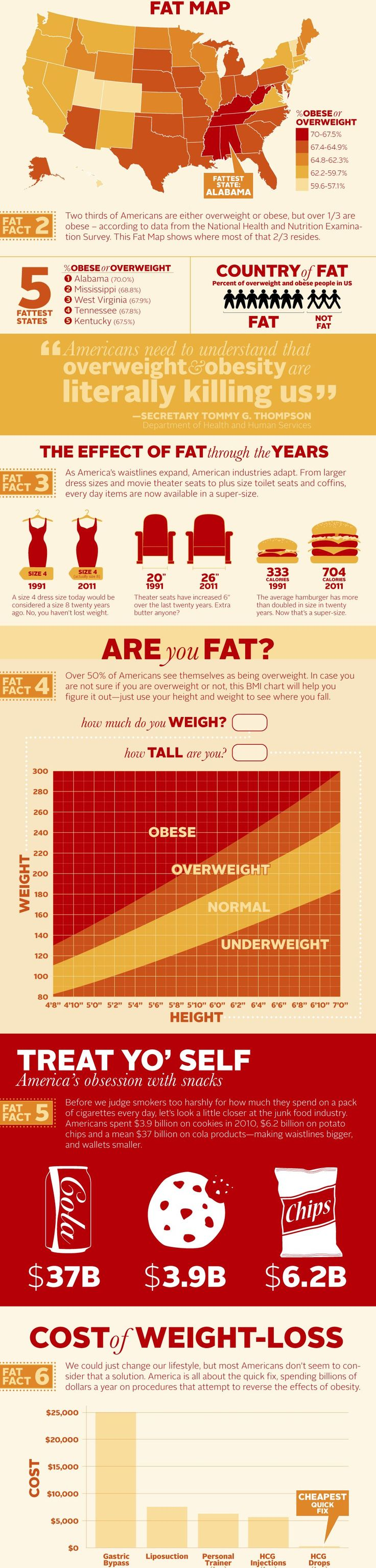 24 best disability and health images on pinterest 1st grades the united states of obesity infographic xflitez Image collections