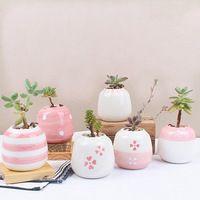 6 шт./компл. мини-керамическая суккулент горшок ручной работы розовый фарфор столе сеялки Домашний Декор цветочный горшок Бонсаи кашпо