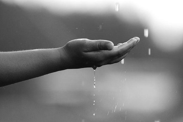 Προσκυνητής: Όπως η βροχή μαλακώνει την γη,έτσι και το άγιο όνο...