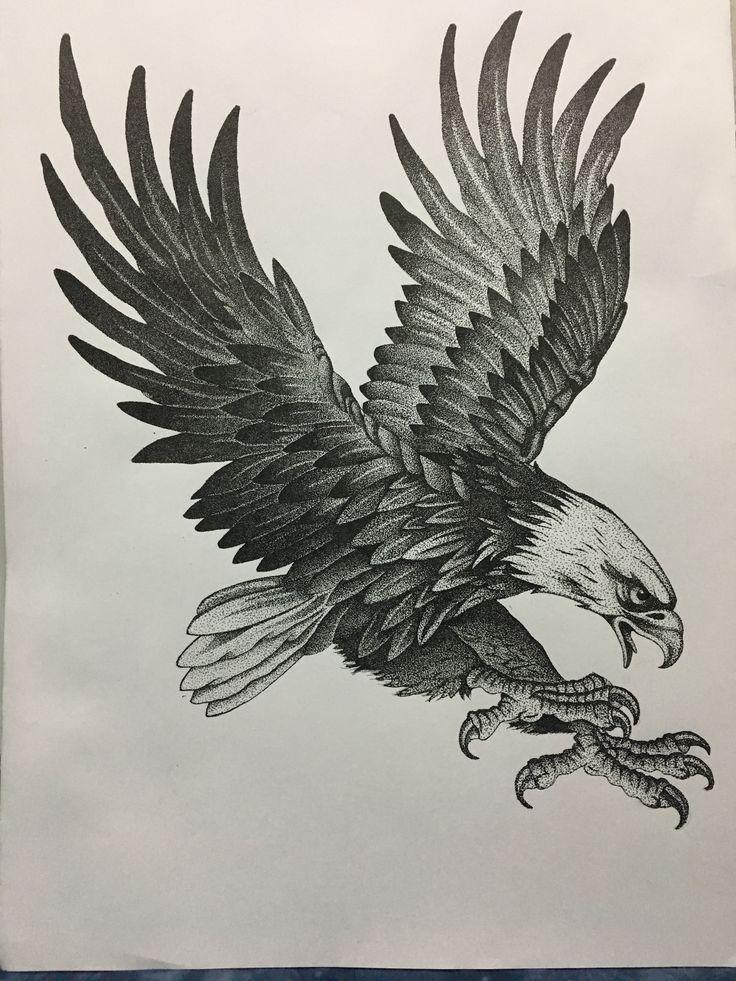Karakartal drawing Drawing izim Ku izimleri