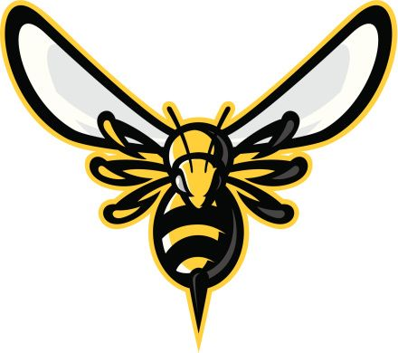 yellow hornets logo - photo #5