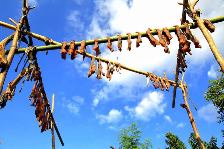 The meat of the captured whale is cut in pieces and dried. These are their commodities for barter in the local market. The villagers from the mountain would exchange a piece of whale meat with ten chunks of fresh cassavas.