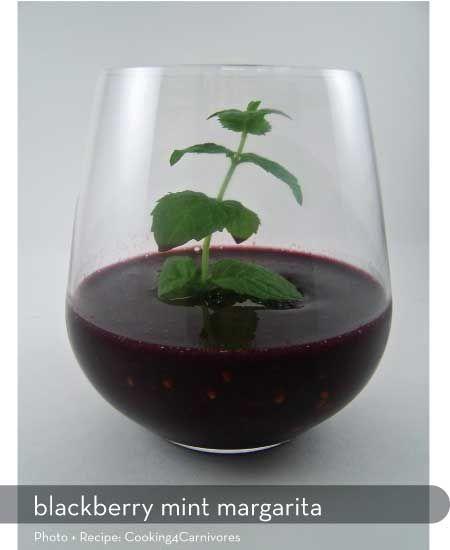 ... blackberry margarita what to do perfect margarita crushes love the