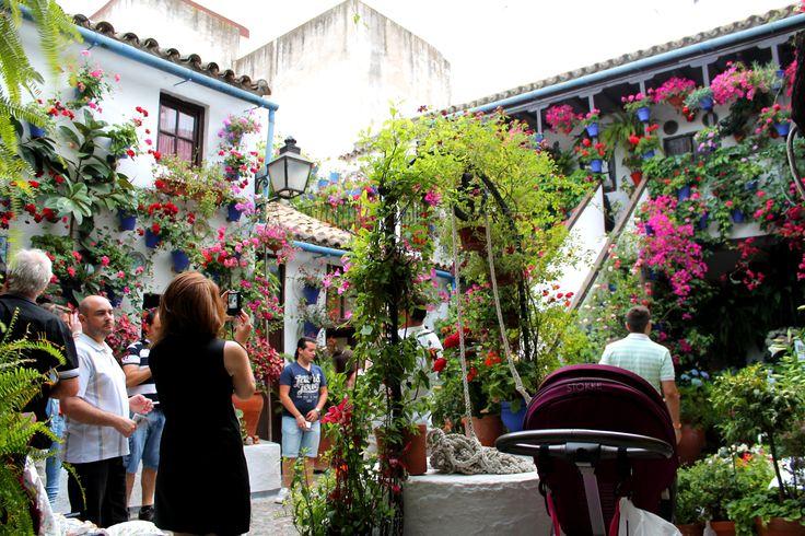 Fiesta de las flores  #fiesta #flores #fuente #sol #ceremonia #concursos #cruces #crucesdemayo #flores #patios #patiosdecórdoba #tradición #mayo #mayocordobés #cordoba #andalucia