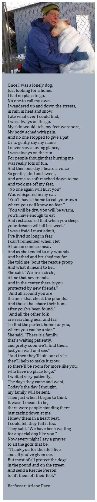 The Circle - Thank you to all of you who has helped a creature in need. You are Special. Beautifully written, this is what every one in rescue feels. And I'm pretty sure what every rescued dog feels.