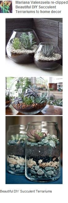 Cool way to have live plants.