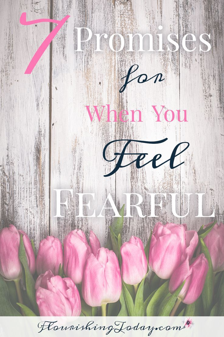 Promises of God | fear bible verses | overcoming fear | battling fear | anxiety | feeling fearful