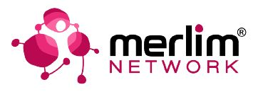 logo_merlim