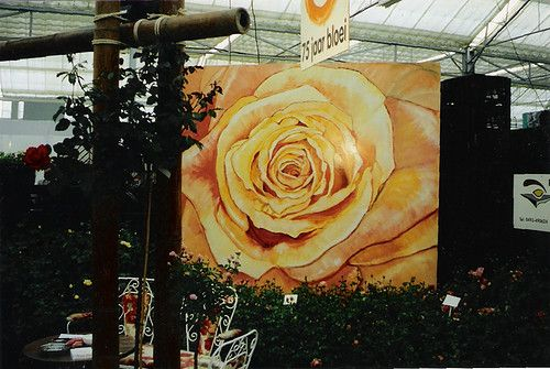 painting of a rose... 2.40 by 2.40 meters.. for sale