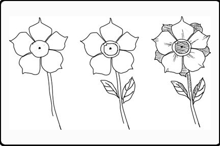 Google Image Result for http://www.drawing-pencil-sketches.com/images/drawings-of-flowers-image-2.gif
