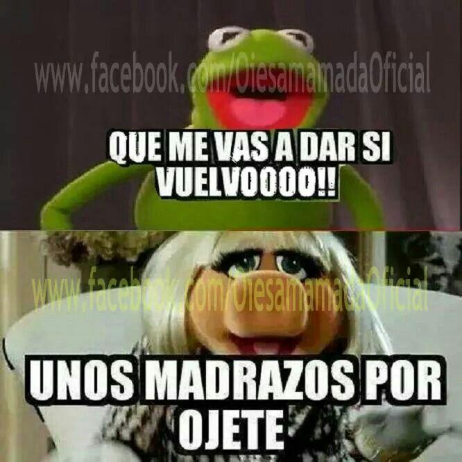 39 Best Muppet Quotes Lol Images On Pinterest: 41 Best Kermit & Miss Piggy Memes Images On Pinterest
