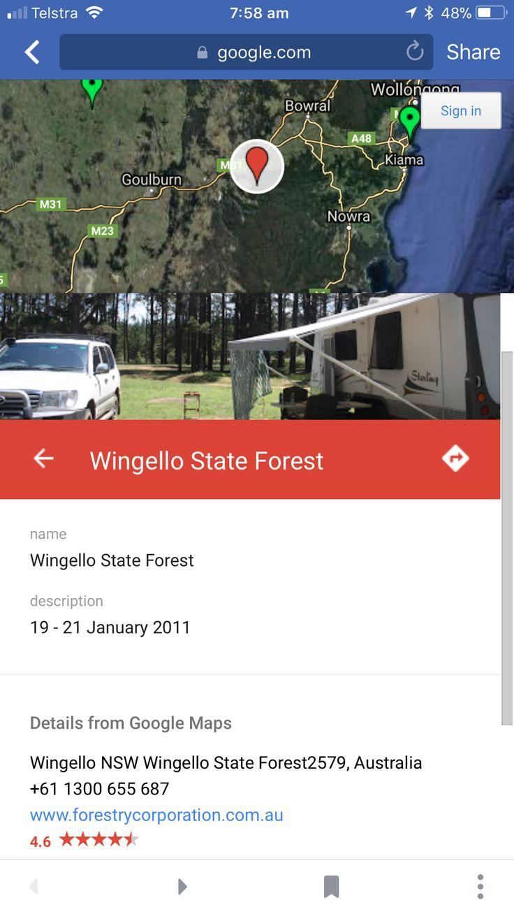 Wingello State Forest Campground  NSW Dog friendly