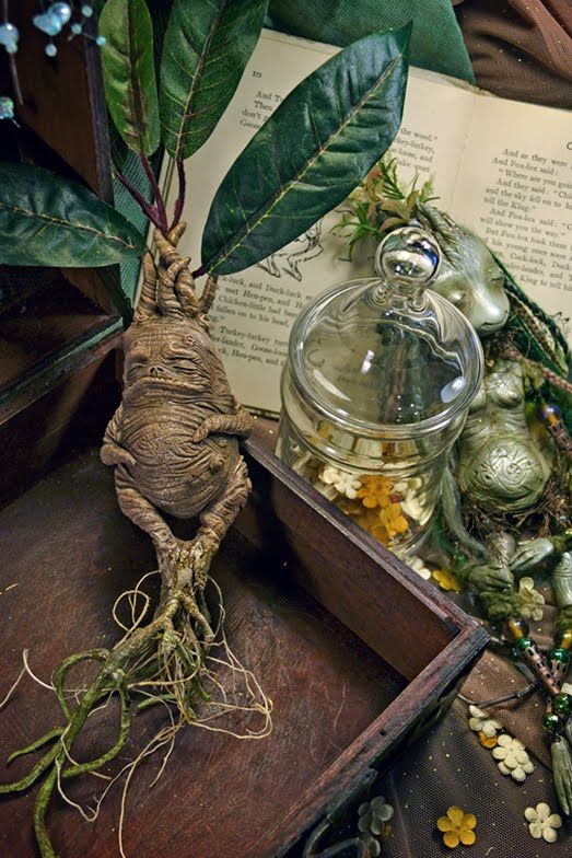 Mandrake by Sandra Arteaga.: Mandrak Roots, Magic, Plants, Harry Potter, Sandra Arteaga, Gardens House, Apothecaries Jars, Fantasy Creatures, The Roots