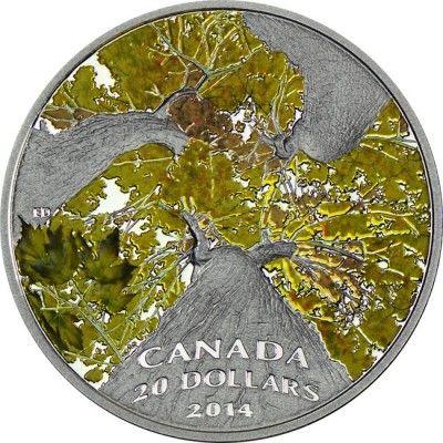 20 Dollar Silber Kanadischer Ahorn - Baumkronendach (Herbstzauber) PP