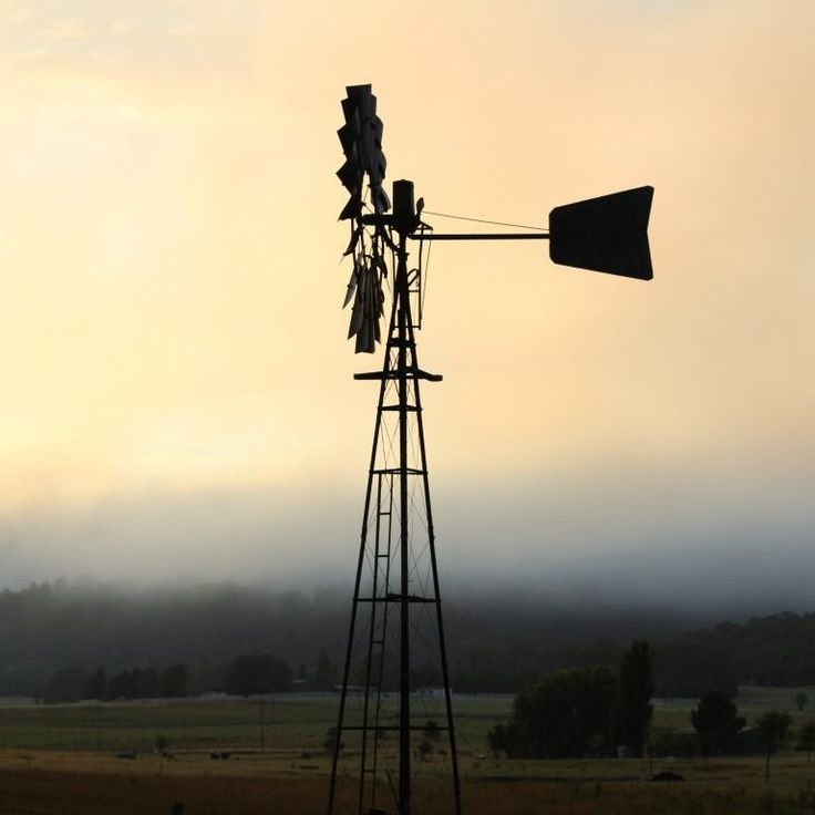 It felt like a windmill kind of Friday morning.  #startthedaywithsomethingbeautiful