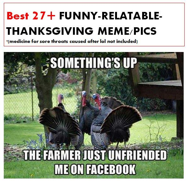Best 27 Funny Relatable Thanksgiving Meme Pics To Lol All Day Http Omgshots Co Funny Thanksgiving Memes Funny Thanksgiving Pictures Happy Thanksgiving Memes