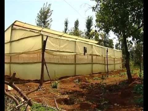 Low cost greenhouse farming