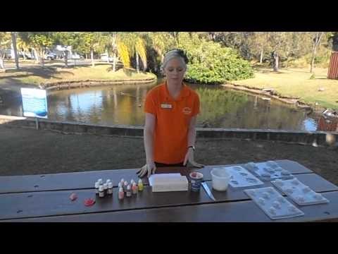 Fraser Lodge Holiday Park - School Holiday Activity Idea