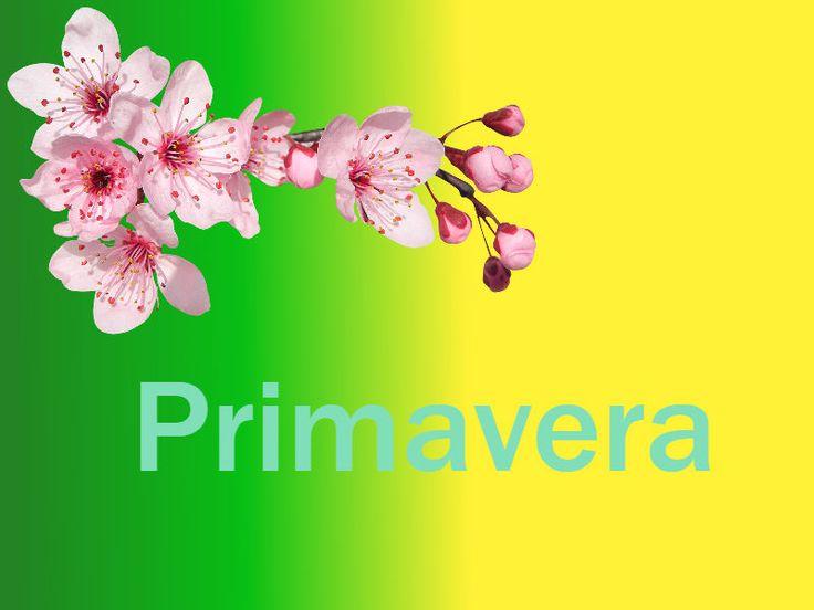 A principios del mes de marzo ya empezamos a vislumbrar la entrada de la primavera, todos sabemos que la flor del almendro es una de las pri...