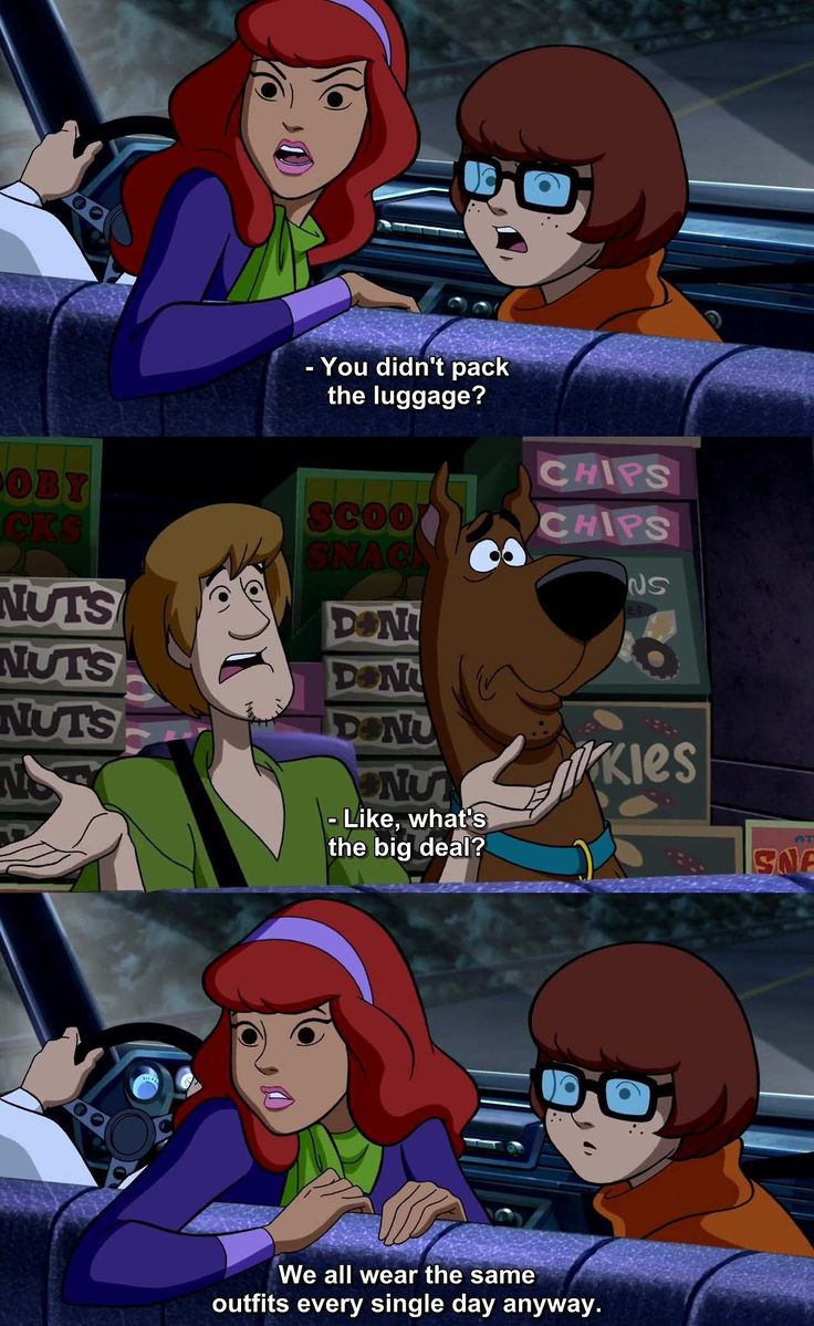 Shaggy's logic is actually logical in this case, which is The Wrestlemania Mystery. Gotta love the Scooby gang!