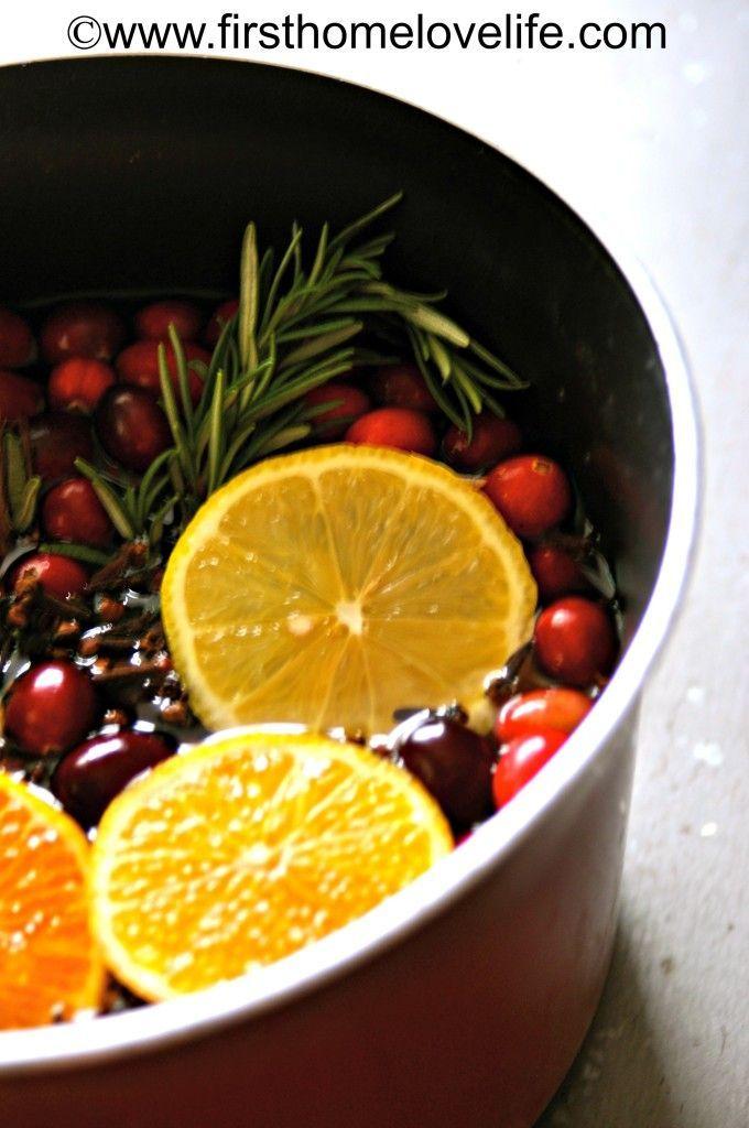Holiday Scent a medium sized pot 1 tablespoon vanilla 3 cups apple cider sliced oranges sliced lemon fresh cranberries whole cloves cinnamon sticks fresh rosemary fresh christmas tree or wreath stems (seriously!)