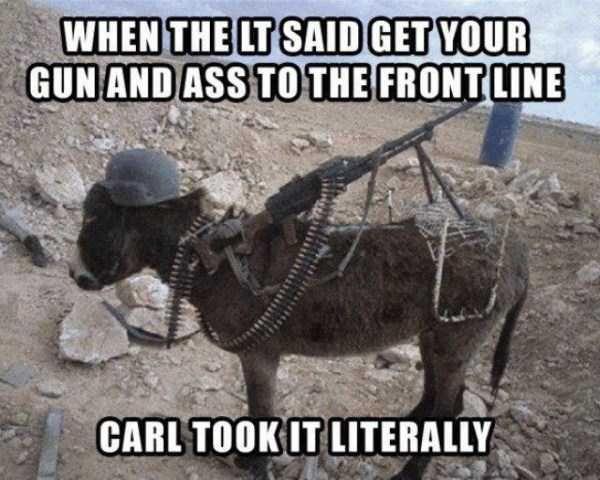 "Hilarious ""Dammit Carl"" Memes"