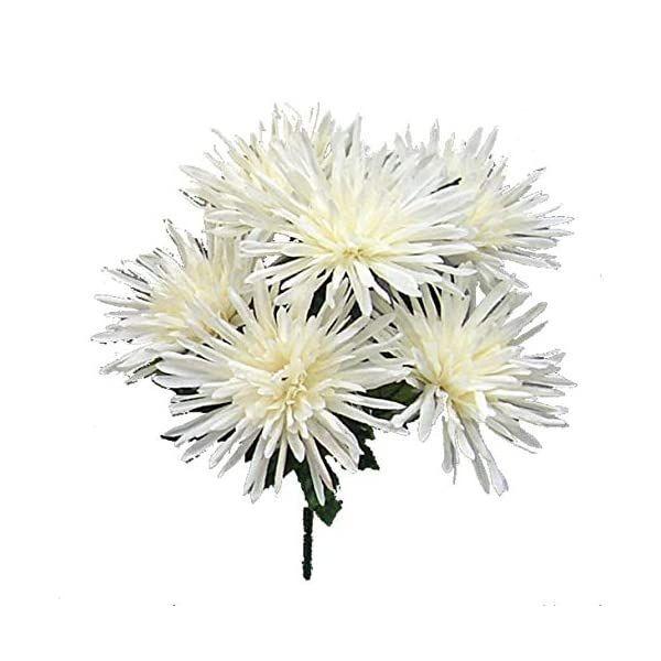 Pin On Mums Flowers