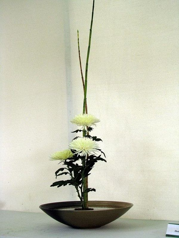Best japanese ikebana art of flower arranging