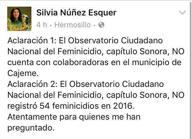 Ojo aquí: comentario importante por parte de la Representante en Sonora del Observatorio Nacional de Feminicidios.
