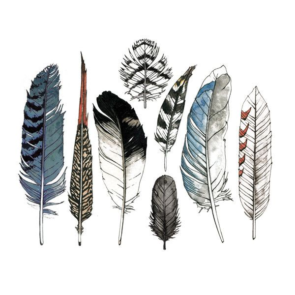 Tattly™ Designy Temporary Tattoos. — Watercolor Feather Set