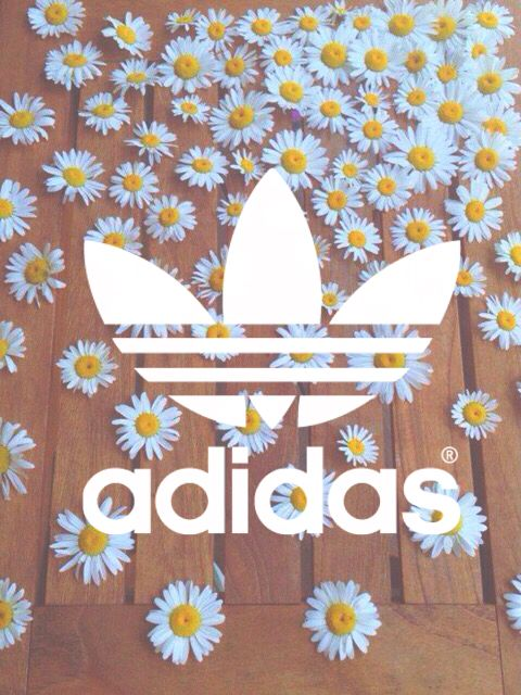 Wallpapers Adidas                                                                                                                                                                                 More