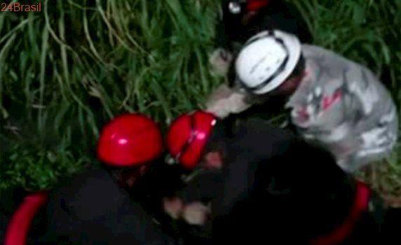 Guarnição de Bombeiros Voluntários de Salvador é especializada em resgate de animais