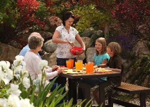 Top 25 Ideas About 60054 Lifetime Convertible Picnic Table