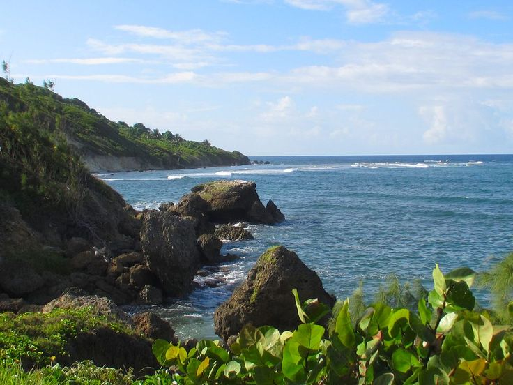 50 Best Beautiful Barbados Images On Pinterest: The Ruggedly Beautiful East Coast Of #Barbados