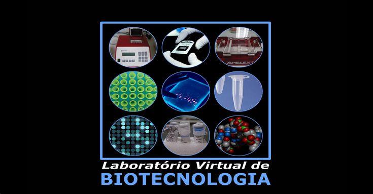 Laboratório Virtual de Biotecnologia  Material Premiado em 2012 - Prémio de Distinção.