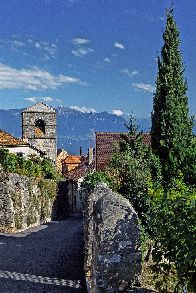 Saint-Saphorin and Lake Geneva, Canton of Vaud, Switzerland