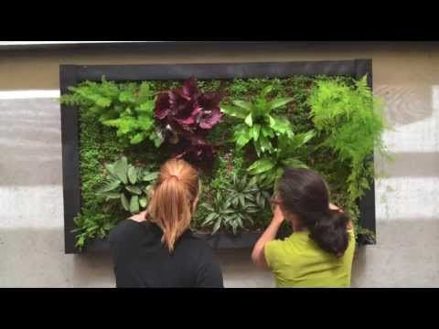 25 best huertos images on pinterest veggie gardens - Cuadro jardin vertical ...