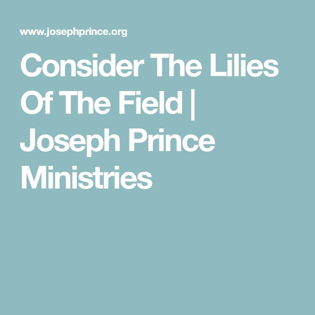 Consider The Lilies Of The Field | Joseph Prince Ministries