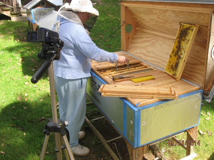 Modified European Long Hive · Backyard BeekeepingRaising ...