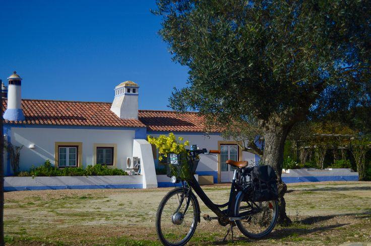 Herdade do Touril SW Alentejo, Portugal